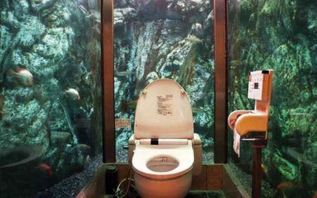 luke barclay bagno acquario