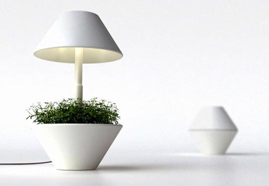 lightpot-foto