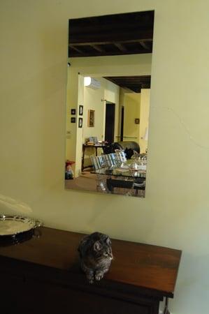 radiatore a specchio