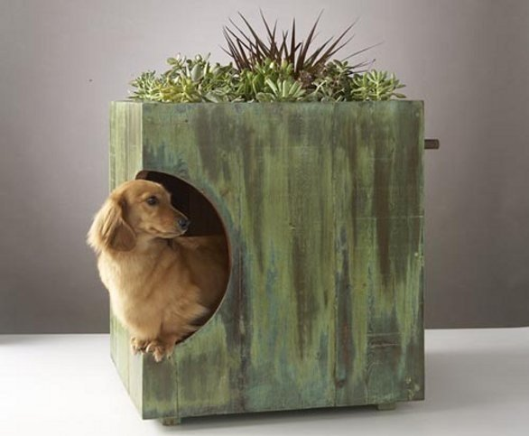 Cucce Per Cani Moderne.Cuccia Per Cani Moderna