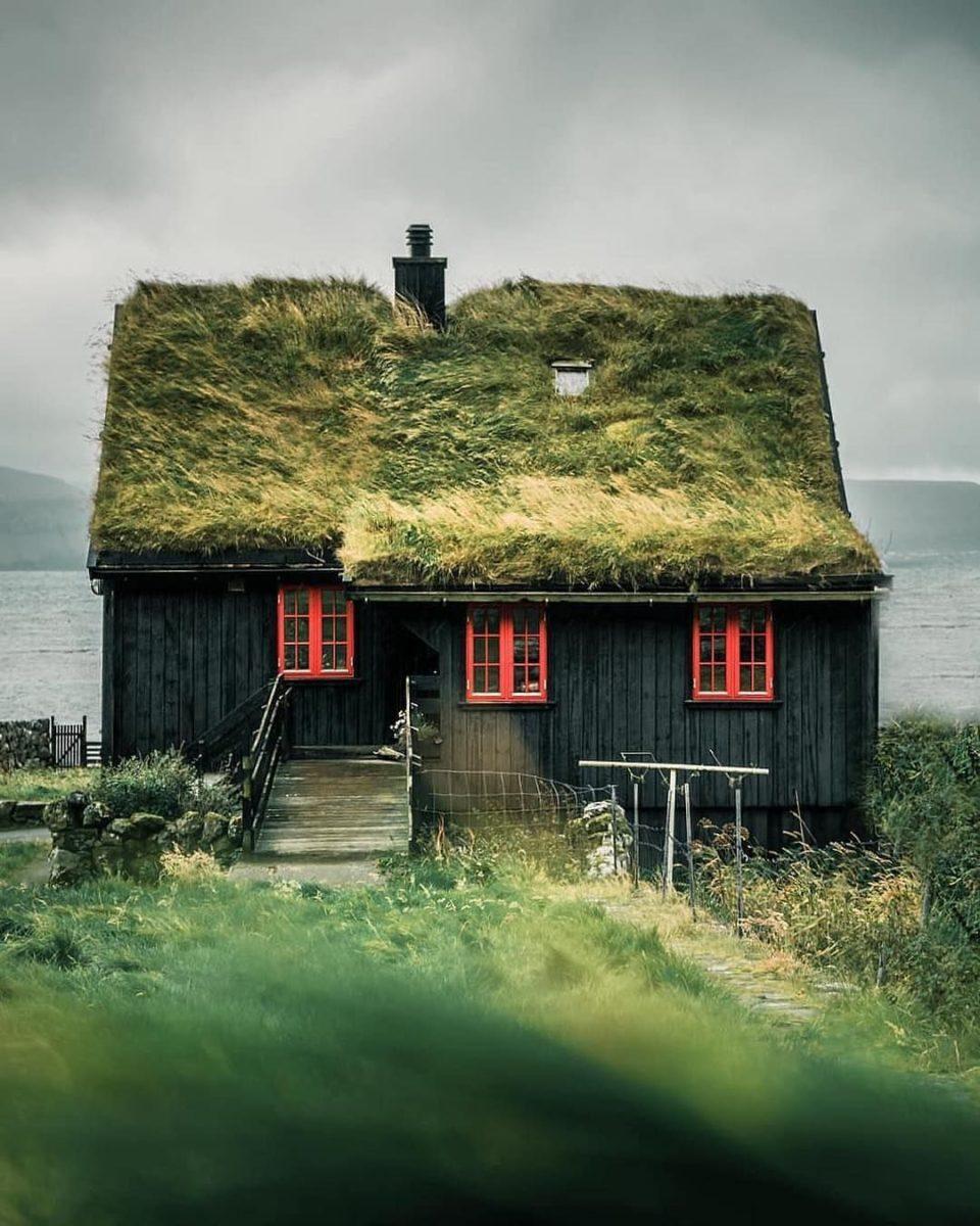 giardino-pensile-tetto