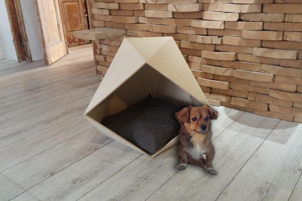 polly-hendrix-cuccia-cani-design-1050×700