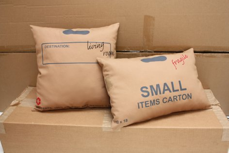 cuscini in cartone