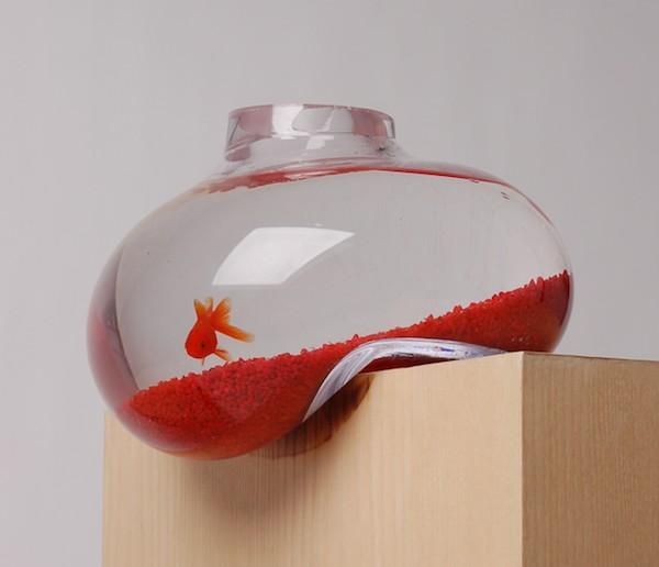 acquario originale