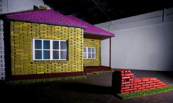 casa con i cartoni delle uova