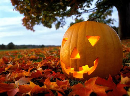 zucca halloween (5)