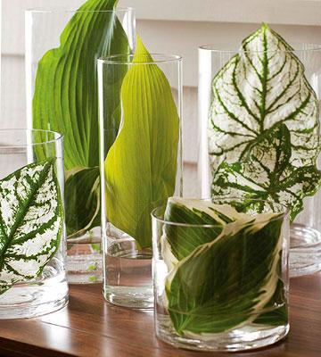 fiori e piante in vasi con l'acqua (20)
