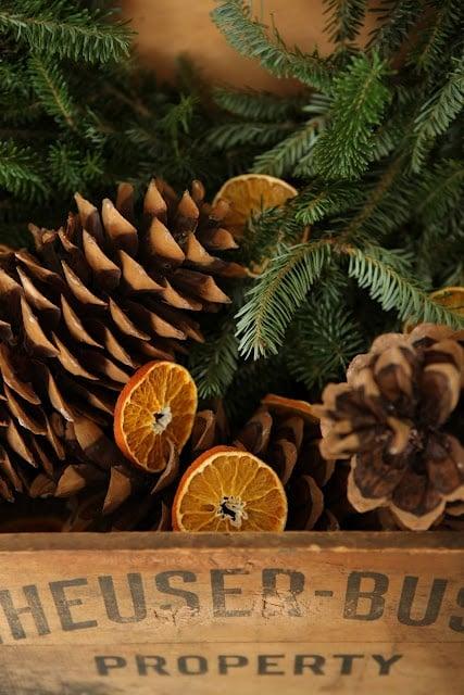 arance-secche