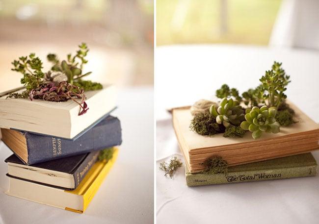 libro-pianta