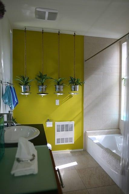 Galleria foto - Quali piante scegliere per il bagno? Foto 51