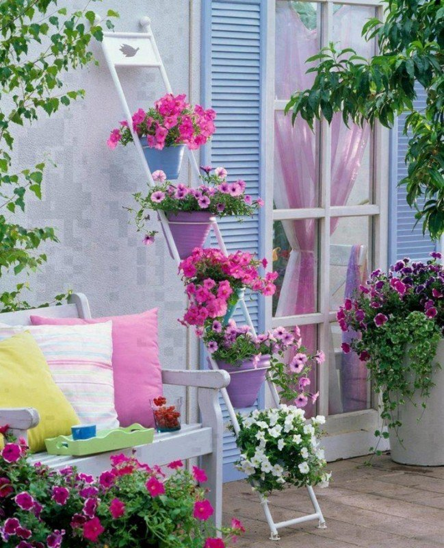 fiori-estivi-da-balcone-soleggiato