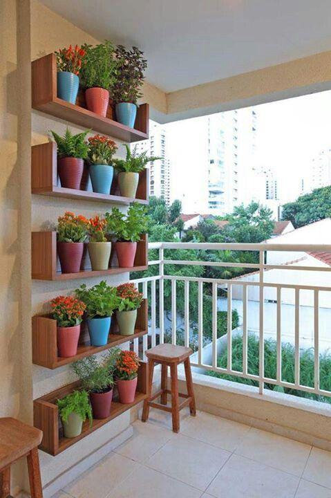 piante-balcone-vaso