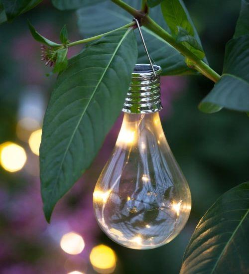 Illuminazione Da Giardino Ad Energia Solare