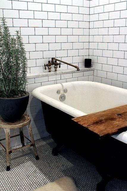 Galleria foto - Quali piante scegliere per il bagno? Foto 33