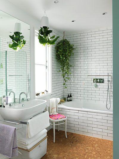 Galleria foto - Quali piante scegliere per il bagno? Foto 22
