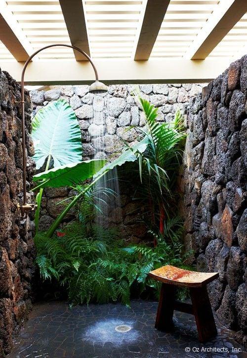 Galleria foto - Quali piante scegliere per il bagno? Foto 21