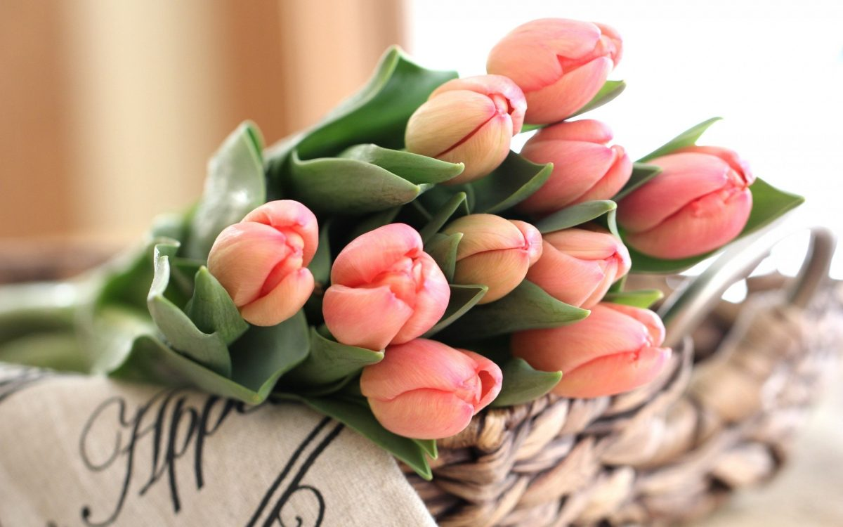 tulipani-casa-idee