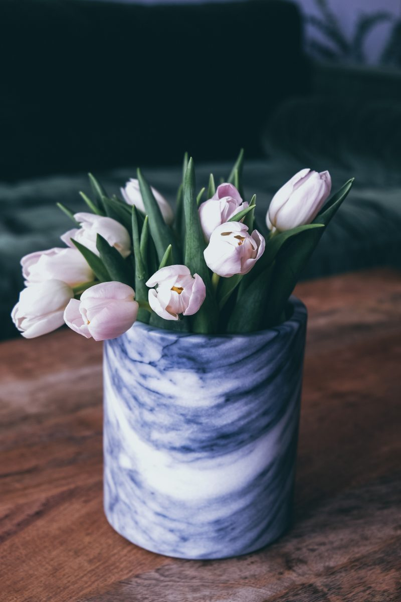 tulipani-casa
