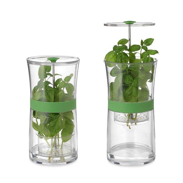 conservare-erbe-aromatiche-spezie