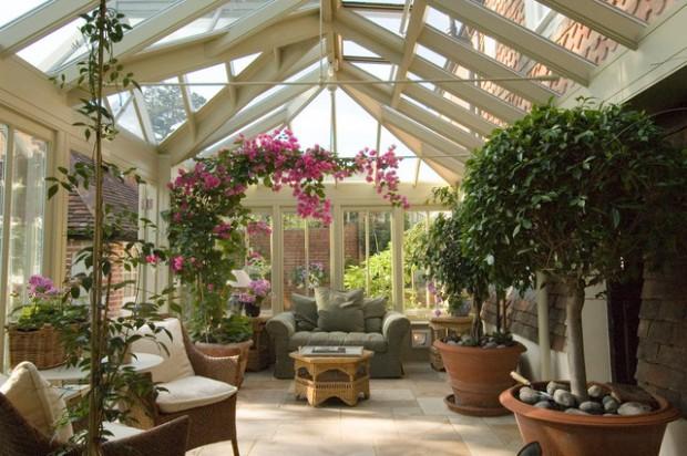 veranda-piante-
