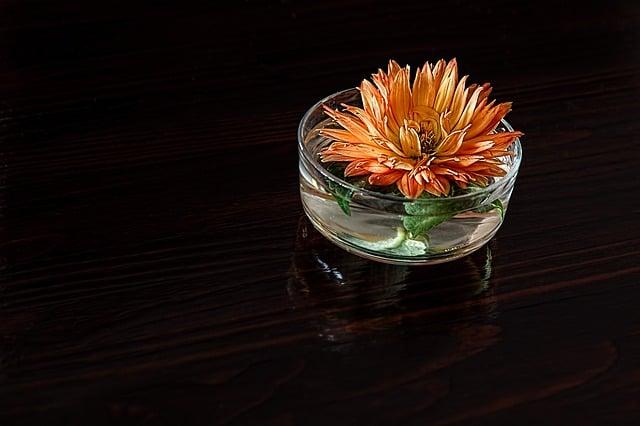 Galleria foto - Vasi con piante e fiori in acqua  Foto 1