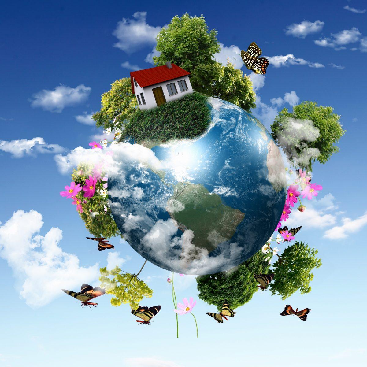mondo-verde