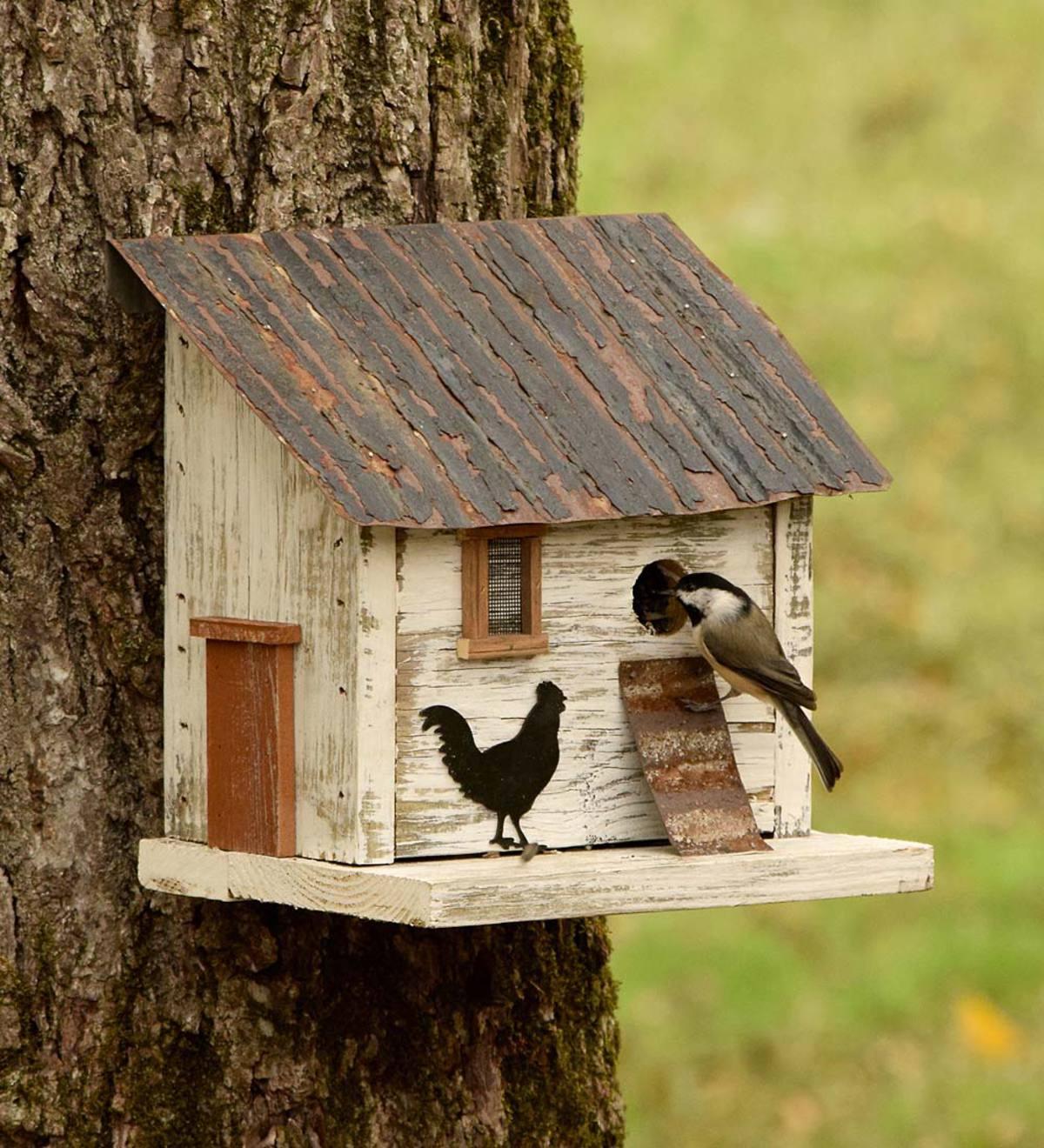 casetta-per-uccelli-17