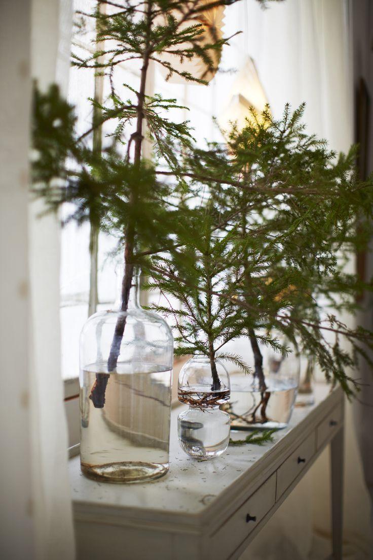 rami-pino-decorazioni