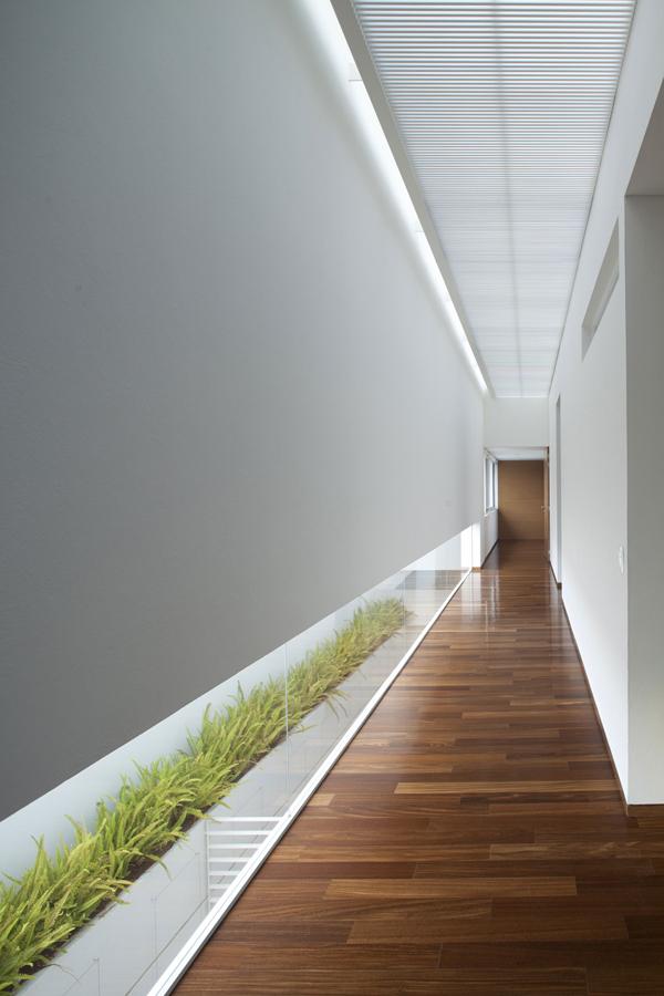 corridoio-arredo-piante