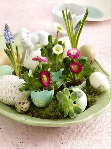 uova-piante-grasse