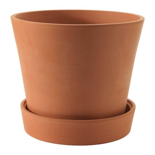 ingefara-vaso-con-sottovaso