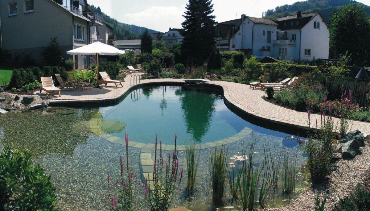 piscina-biologica-guida-