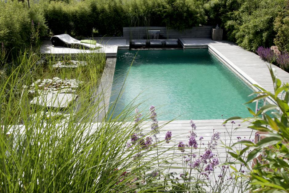 piscina-biologica-guida