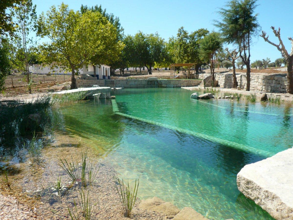 piscina-naturale-biologica