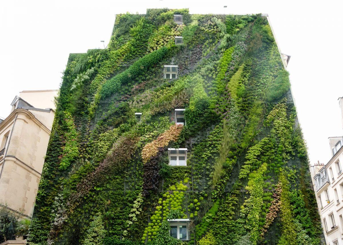casa,giardino,verticale