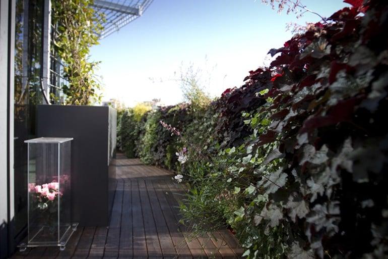 Galleria foto - Giardini esterni verticali Foto 30