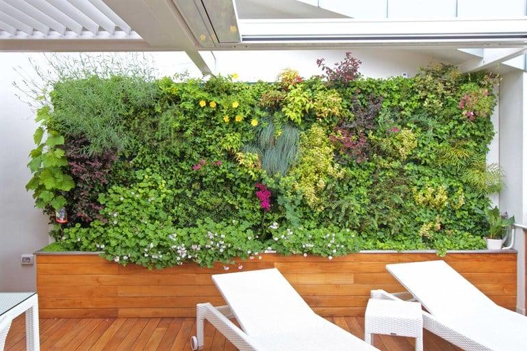 Galleria foto - Giardini esterni verticali Foto 20