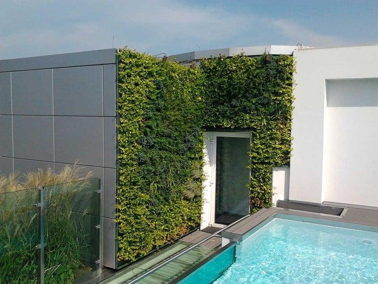 Galleria foto - Giardini esterni verticali Foto 26