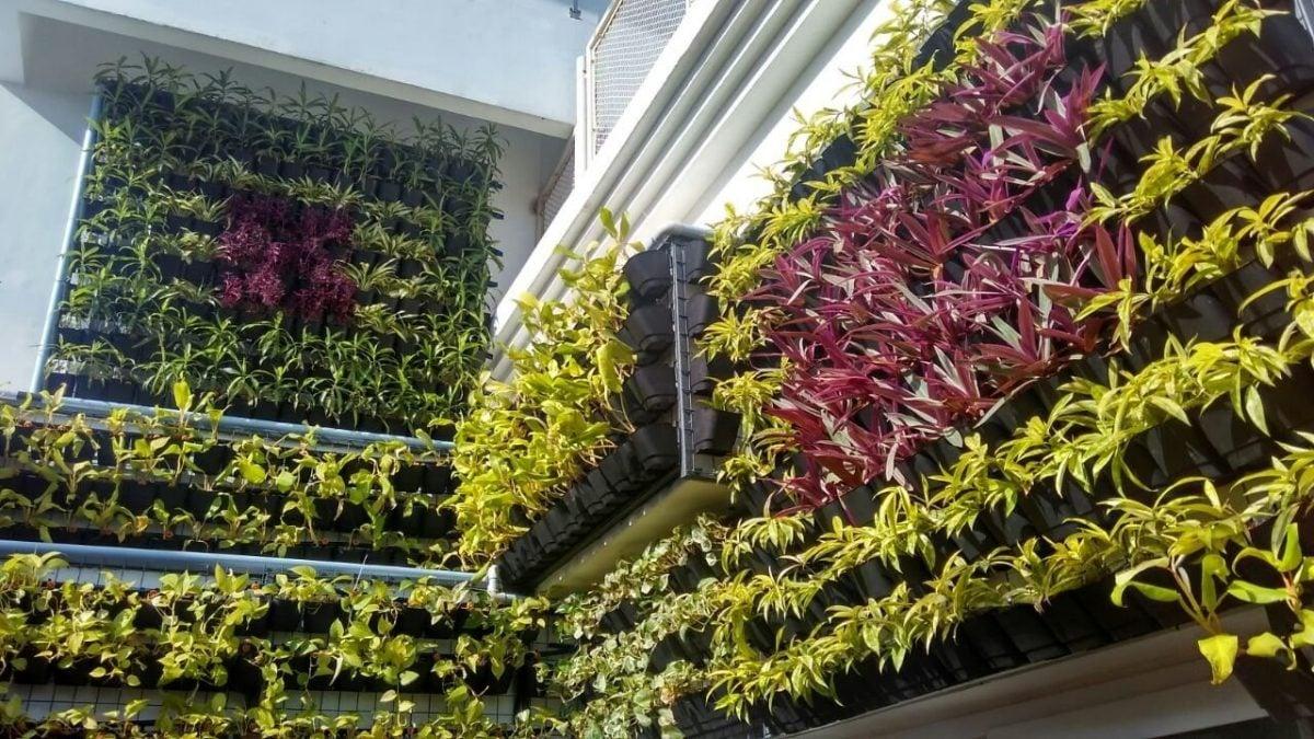 giardino-verticale-idee