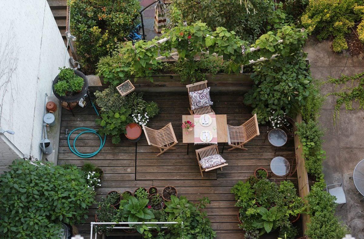 Terrazzo con fiori e piante - Piante per il terrazzo ...