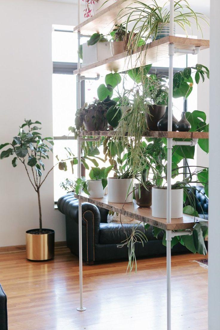 idee-piante-casa
