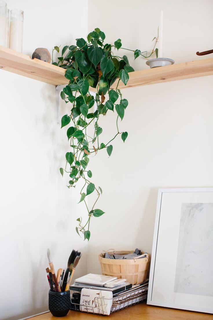 pianta-casa-