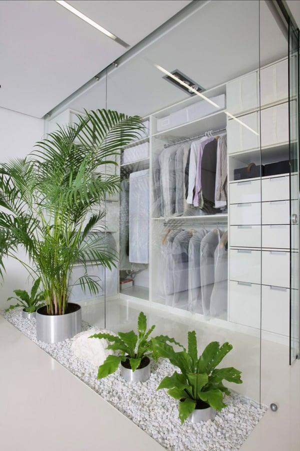 piante-casa-idee-
