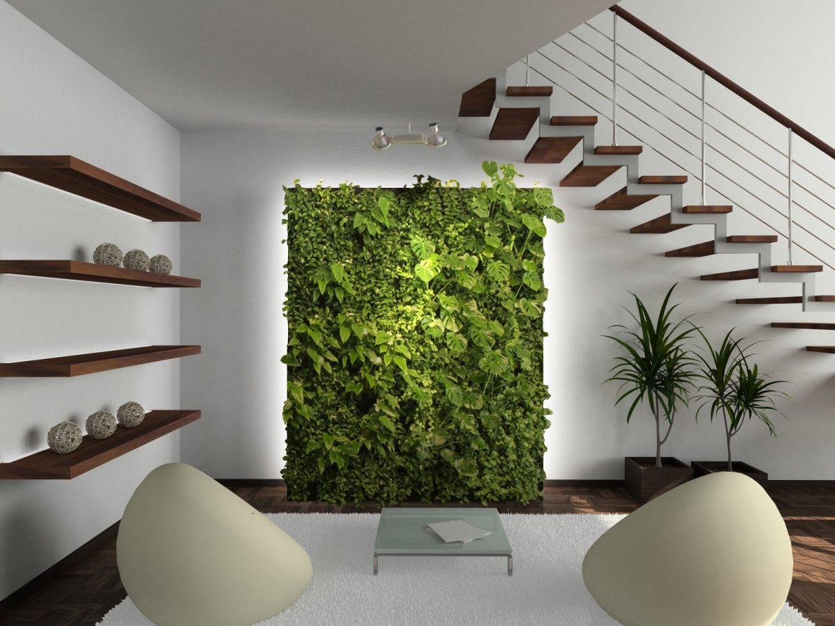 Piante Da Arredo Appartamento piante ideali per abbellire il soggiorno di casa