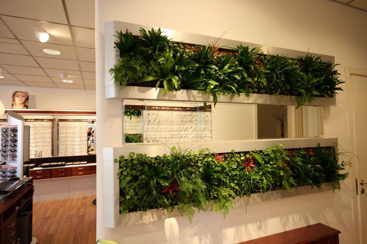 come-separare-stanze-senza-muro-piante