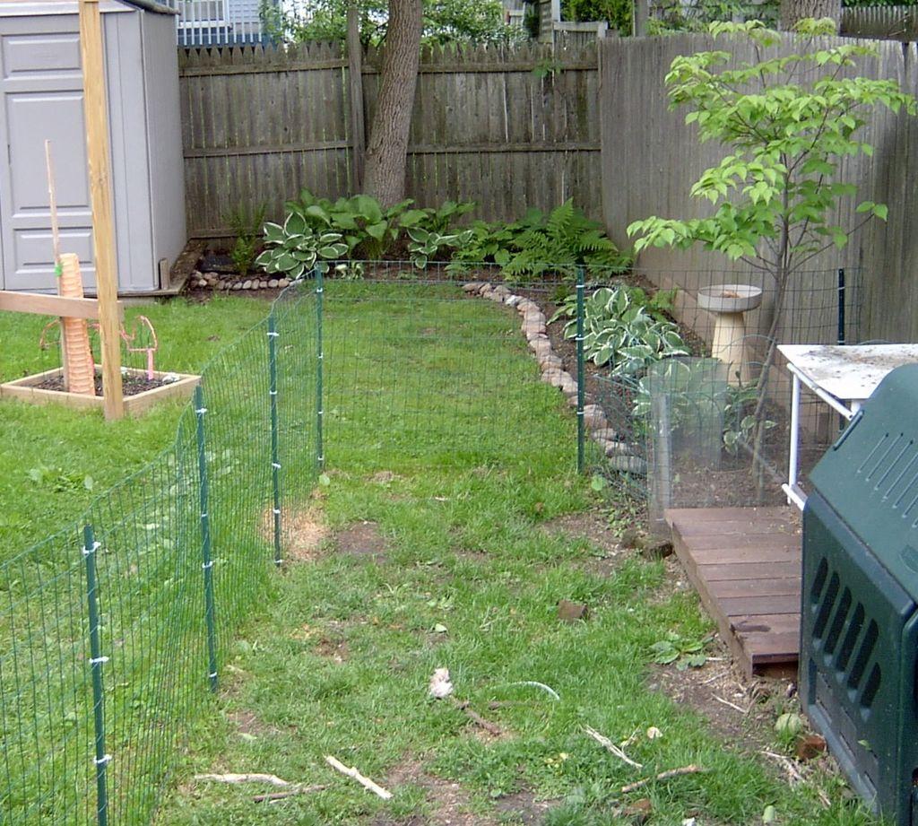 giardino-cane