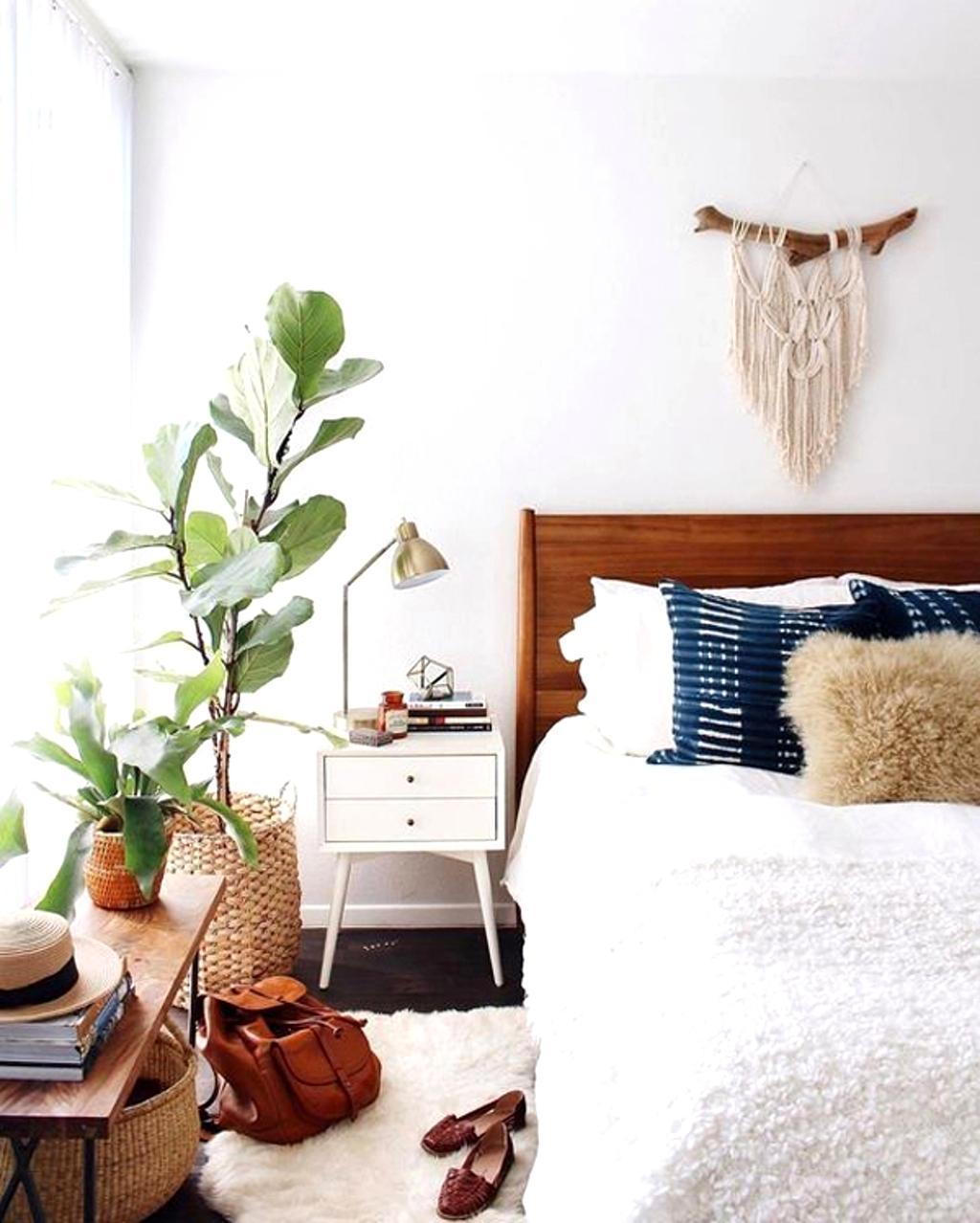 Piante perfette per camera da letto