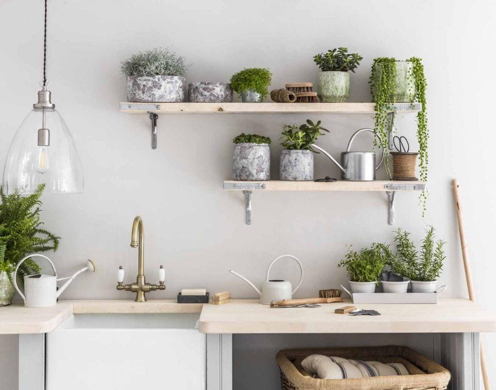 piante-cucina-