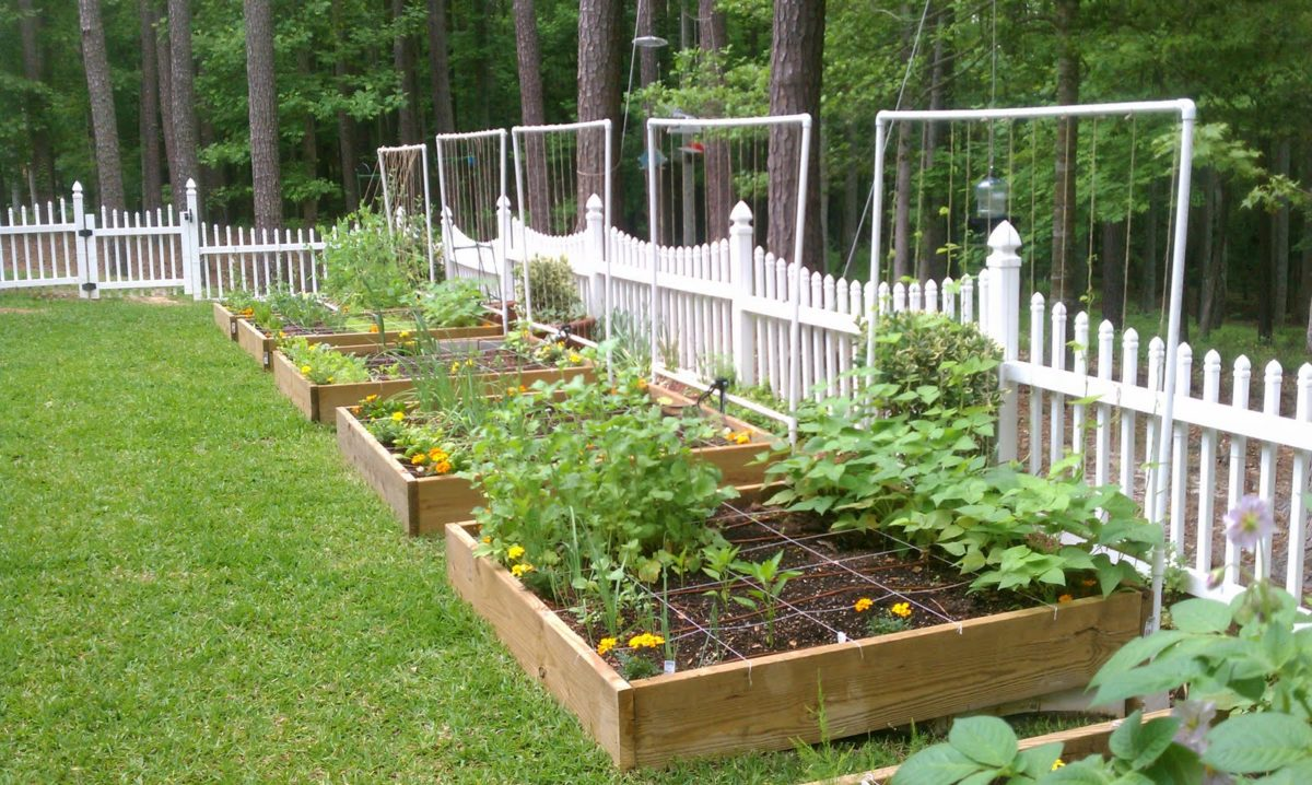 impianto-irrigazione-piccolo-orto