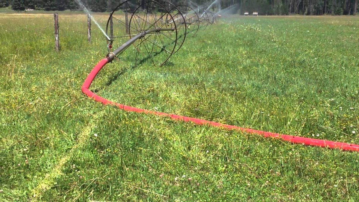 impianto-irrigazione-prato